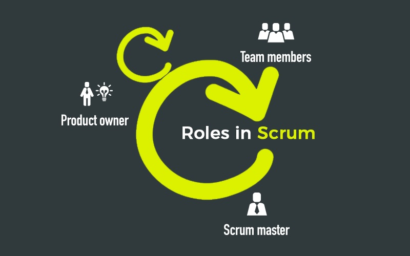 Role in Scrum