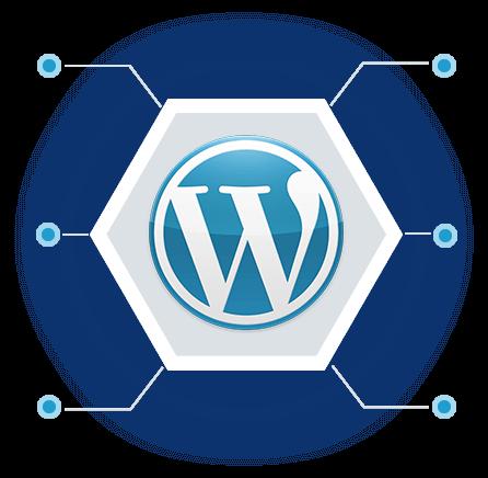 Why Choose WordPress?